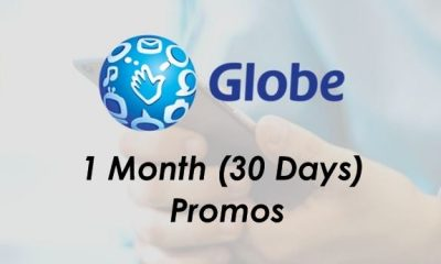 globe promos for 1 month