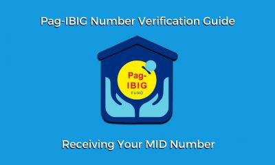 pag-ibig online verification tracking number